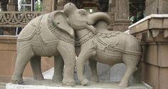 Elephant or Bull?