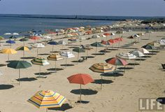 Rows of open beach umbrellas lining a sandy Cape Cod beach, 1957. Photo by Dmitri Kessel for Life.