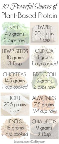 Plant Based Protein | 9 Ways To Eat A More Plant Based Diet For Healthy Happy…