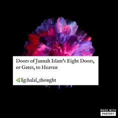 Allah Love, Islamic Quotes, Hindi Quotes, Islam Quran, Garden Gifts, Meaningful Words, Prayers, Heaven, Faith