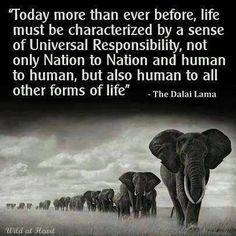 """""""Today more than ever before, life must be characterized by a sense of Universal Responsibility, not only Nation to Nation and human to human, but also human to all other forms of life.""""  --Dalai Lama"""