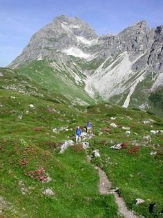 Lechtal - Warth & Schröcken Gemstel pad & Widderstein