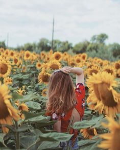 Likes, 58 Comments - Nina Your Favorite, Illustrations, Songs, Sunflowers, Instagram, Illustration, Song Books, Sunflower Seeds, Illustrators