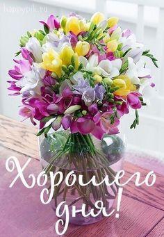 Beautiful Flowers Photos, Good Morning Beautiful Images, Beautiful Flower Arrangements, Flower Photos, Beautiful Roses, Pretty Flowers, Birthday Wishes Flowers, Happy Birthday Wishes Cards, Evening Pictures