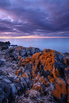 Penneshaw, Kangaroo Island | South Australia (by Rodney Campbell)