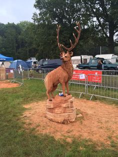 Stag Chainsaw carving at the APF Show, Ragley Hall, Warwickshire #chainsawcarving #APF