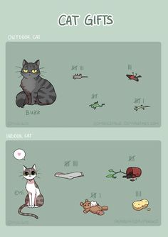 Talented Artist Illustrates Funny and Adorable Moments With Her Cat - World's largest collection of cat memes and other animals Funny Animal Jokes, Funny Cat Memes, Cute Funny Animals, Funny Animal Pictures, Animal Memes, Cute Baby Animals, Cute Cats, Funny Cats, Memes Humor