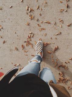 Autumn walks in checkerboards.