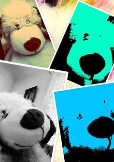 Dog art collage.