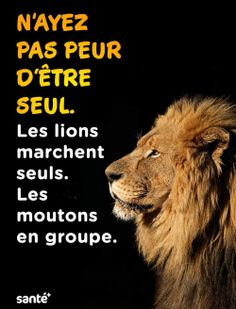 Positive Attitude, Positive Quotes, Motivational Quotes, Inspirational Quotes, Mots Forts, Strong Words, French Quotes, Tecno, Guided Meditation