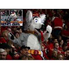 Calgary Flames mascot Harvey the Hound inset Craig MacTavish Mascot Costumes, Adult Costumes, National Hockey League, Cute Anime Couples, Calgary, Nhl, Ranger, Animals, School