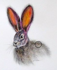 Bunny Rabbit, print, 9x11, image size, 8x6