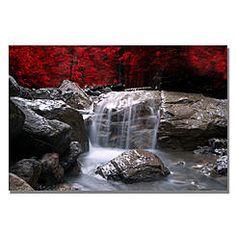 Trademark Fine Art Philippe Sainte-Laudy 'Red Vison' Canvas Art