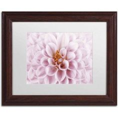 Trademark Fine Art 'Pink Dahlia' Canvas Art by Cora Niele, White Matte, Wood Frame, Size: 16 x 20, Multicolor