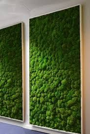 1001 ideen zum thema moosbilder selber machen wandverkleidung selber machen und bepflanzung. Black Bedroom Furniture Sets. Home Design Ideas