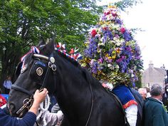 Happy Oak Apple Day! You'll get your bum pinched if you don't wear a sprig of oak!   Although this old holiday was abolished in 1859 some parts of Britain still hold events. In Castleton, Derbyshire they parade a garland through the village on horseback. Castleton Garland Day is a custom that has been celebrated in Castleton for hundreds of years and it is held on Oak Apple Day.  More on Oak Apple Day & Castleton Garland Day by Somewhere in the world today…