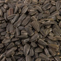 There are many health benefits of using sunflower seeds for your everyday consumption. Apart from being very tasty with the added salt to the roasted seeds, it also offers the best nutrition for your body. It has anti-inflammatory properties and it will help your body to avoid free radicals and many types of diseases. Many …