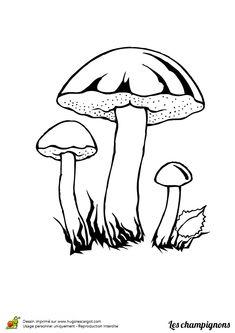 Coloriage dessin champignon vesse de loup coloriages - Dessiner un champignon ...
