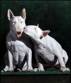 """Don't lower our prestige!"" #dogs #pets #BullTerriers Facebook.com/sodoggonefunny"