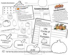 Pumpkin Starter Unit (Image from Montessori Print Shop)
