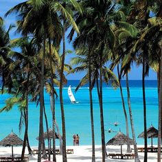 Dream of Zanzibar Resort #Zanzibar #dreamofzanzibar  #MyVillas