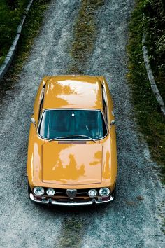 Mustard colored car- this color would be great in my kitchen or just for the accent wall. I love it
