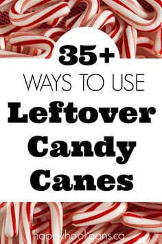 35+ fabulous, creative ways to use leftover candy canes. Fudge, cookies, drinks, ice cream snacks, crafts, gifts, science projects and more! - Happy Hooligans