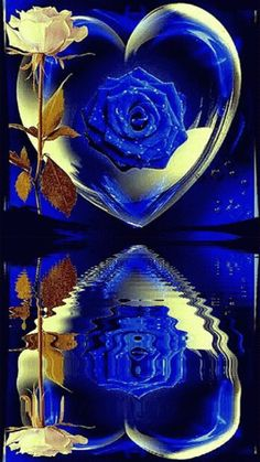 Beautiful Heart Images, Beautiful Love Pictures, Beautiful Flowers Wallpapers, Beautiful Rose Flowers, Beautiful Nature Wallpaper, Beautiful Gif, Romantic Roses, Blue Roses Wallpaper, Flower Phone Wallpaper
