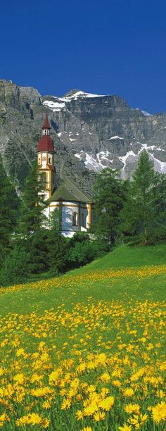awesome Alps, Austria...