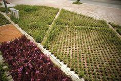 Julio-Mario-Santo-Domingo-Library-Park-06 « Landscape Architecture Works | Landezine