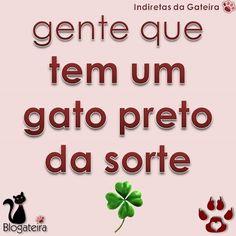 ► Porque quem tem um gato preto, tem muita sorte! ♥