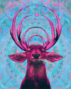 """SCamp Bassnectar """"Psychedelic pattern just for the background and one fleshed out illustration as the focal point. Again, contrast of warm and cool colours. Pop Art, Psychedelic Art, Psychedelic Pattern, Art Fou, We All Mad Here, Illustration Photo, Jasper Johns, Art Graphique, Grafik Design"""