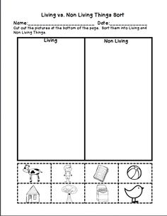 Printables Living Vs Nonliving Worksheet living vs nonliving sort worksheet science ideas pinterest non freebie