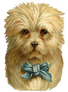 Vintage Clip Art- Darling Dog with Bow - The Graphics Fairy