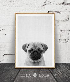 Pug Print Wall Art, Black and White Decor by Lila and Lola
