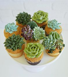 succulent cake images Two years ago Leslie Vigil decided to merge her love of succulents and baking, using buttercream to decorate cupcakes and multi-teared cakes with bountiful collections of aloe, cacti, and echeveria. Deco Cupcake, Cupcake Cakes, Themed Wedding Cakes, Themed Cakes, Wedding Cupcakes, Bridal Shower Cupcakes, Succulent Cupcakes, Cactus Cake, Cactus Cupcakes