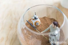 Decorate like a Jedi with 'Star Wars' terrariums