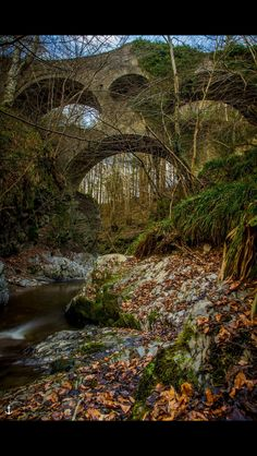 Buckie Brudge at Dryburn, Scotland