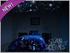 Glow in the Dark Secret Star Ceiling Mural - Invisible By Day...INCREDIBLE By Night