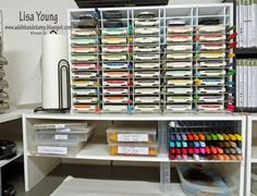 Add Ink and Stamp: Let's Talk Storage, Day 2      http://www.organizemore.com/Pro-Ink-Organizer_p_27.html