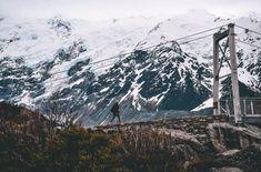 Zo mooi is de Hooker Valley trail + handige wandeltips Takayama, Little Italy, Japan, Backpacker, Auckland, Mount Rainier, Empire State Building, Lonely, Mount Everest