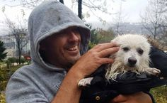 Over-The-Moon Taxi Driver Saves Dog From River Wish there were more people in the world like him..wonderful man!