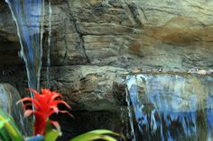 Creative Rock is the place to go to find the best koi fish pond and waterfall builder in Sydney. Artificial rock fish ponds looks great accenting your home and integrated within your landscape. Koi Ponds can even be made for indoor use creating a look and feel of being nearer to nature every day.