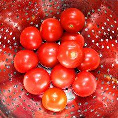 Fresh Picked Tomatoes by DesignbyRita on Etsy, $15.00