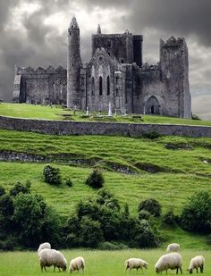 Following are the The Most Amazing Castles in Ireland:
