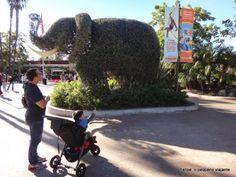 Felipe, o pequeno viajante: San Diego Zoo (cobertura completa!) e as praias da cidade - o roteiro do terceiro dia