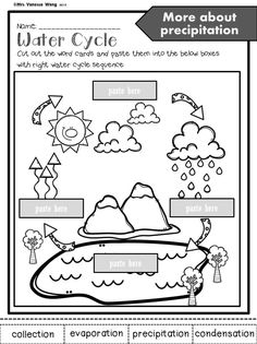 Weather Activities For Kids, Science Activities, Science Lessons, Science Education, Weather Crafts, Science Experiments, Science Chemistry, Science Fun, Physical Science