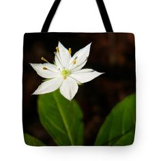 "Starflower Tote Bag by Christina Rollo (18"" x 18"").  The tote bag is machine washable, available in three different sizes, and includes a black strap for easy carrying on your shoulder.  All totes are available for worldwide shipping and include a money-back guarantee."