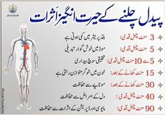 Health And Beauty Tips, Health Advice, Life Advice, Back Workout At Home, At Home Workouts, Basic English Sentences, Best Quotes Images, Job Interview Tips, Islamic Messages