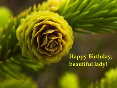 Happy birthday, beautiful lady